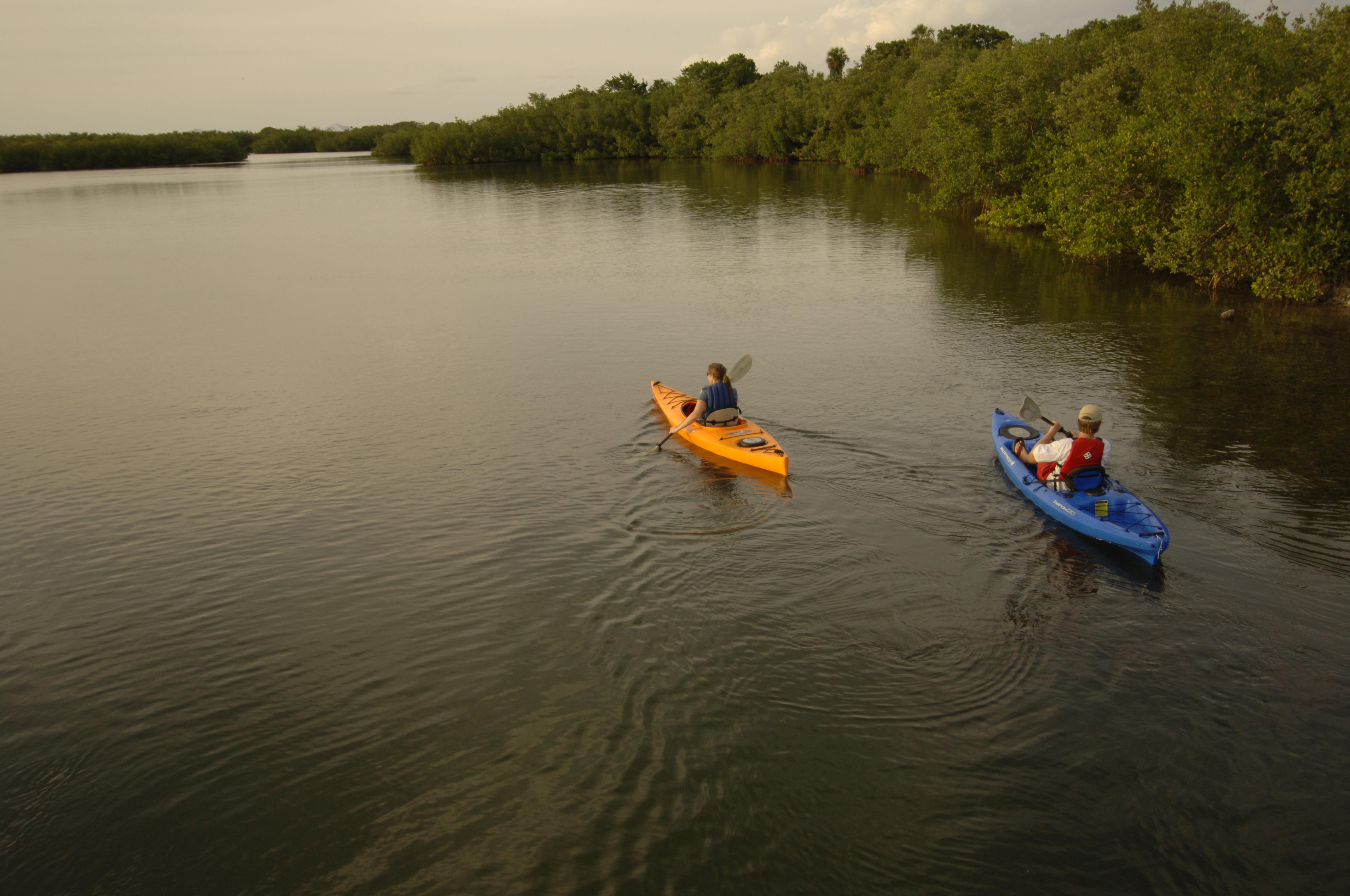 Myakka River State Park in Sarasota, Florida
