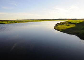 Myakka State Park in Sarasota, Florida with RVA
