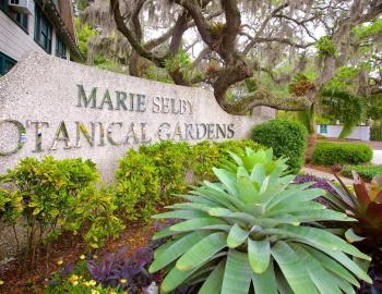Marie Selby Botanical Gardens in Sarasota, Florida