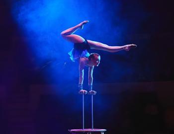 Circus Sarasota in Sarasota, Florida