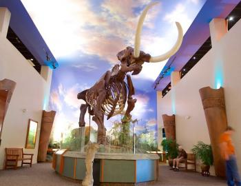 The Bishop Museum of Science and Nature in Sarasota, Florida